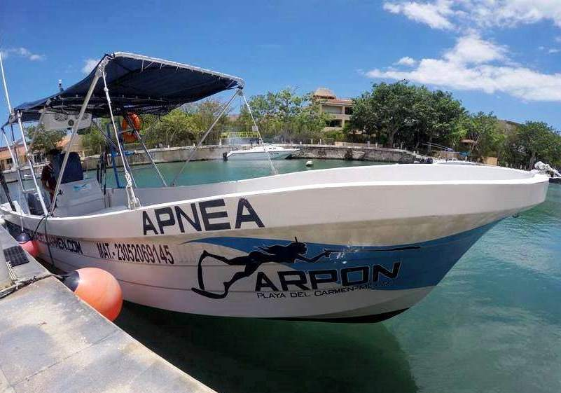 arpon spearfishing boat 3