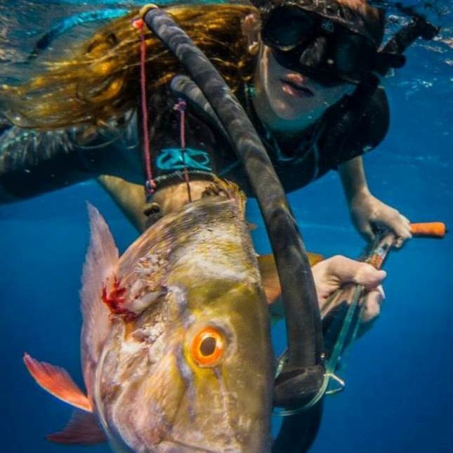 Arpon Spearfishing offers extreme, relaxing or family